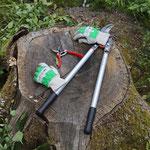 Die technischen Helfer: Garten- und Astscheren sowie feste Handschuhe