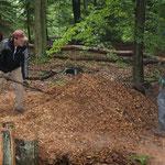 Gehacktes für die Käferlarven