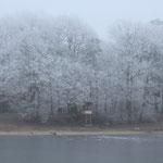 Wintermorgen mit grauem Licht