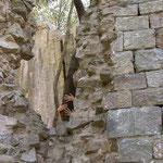Die Ruine- il torre di Cerretaccio