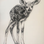 Drawing on paper, 50 x 60 cm, 2020, Available at Deer Daddy - 600 euro