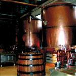 Distillerie of SARL Pautier in Veillard (BOURG-CHARENTE) - Pineau des Charentes du Domaine Pautier