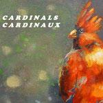 Josée Desharnais   cardinals / cardinaux