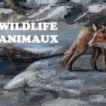 Josee Desharnais, wildlife