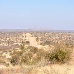 Le bush. En route vers le désert du Namib
