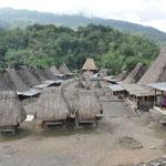 Vu globale du village