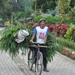Le vélo est un moyen de locomotion très pratique