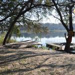 Oui il y a des hippos et des crocodiles dans ce fleuve