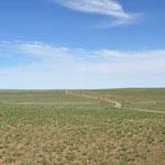 La steppe... rien pas un arbre, pas un cailloux