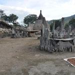 Ici nous sommes à Bena, l'autre grand village traditionnel. Au premier plan des stèles de pierre, Péo, sont placées autour d'une pierre sacrificielle.