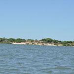 Dans un même écosystème se mêlent des paysages contrastés : mangrove, dunes de sable, forêt, plages de sable blanc, plaines inondables ....
