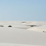 Au loin partout le sable et quelques lagunes