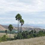 Vue de Rinca et des environs
