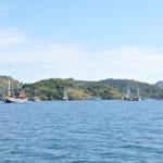 l'ile de Rinca