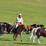Cavalier mongol