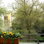 Frühjahr 03.04.2013, Foto L. Kehnen