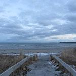Beach Meadows