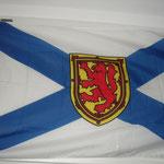 Meine Nova Scotia Flagge