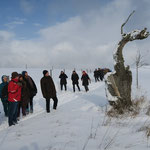 Kulturkreis Vellberg, Winterwanderung am Sonntag, 17. Januar 2016