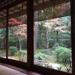茶室松雲亭 紅葉が見事