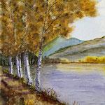 5 Birken am See, Aquarell  30 x 40cm