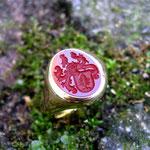 Siegelring für Herren aus Gelbgold mit Karneol