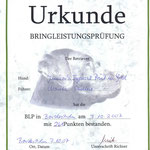 Bringleistungsprüfung/Retriever Oktober 2007