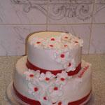 Torte 169