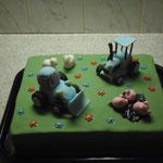 Torte 51
