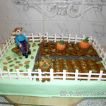 Torte 36