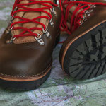 natürliche Schuhpflege