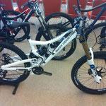 Bachmanns Bikestatt, Flatline