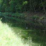 Fête de la Ladrerie - La Hunelle