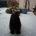 ... im Schnee spielen macht Spass ...