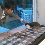 長〜い待ち時間でもイヤな顔ひとつせず、猫を可愛がるイケメンモデル、NAOKIさん