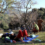 camping à Muree
