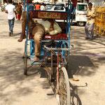 la sieste du Rickshaw-wallah, une sorte de yoga...