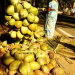 une noix de coco avant d'entamer la montee vers Kodaikanal
