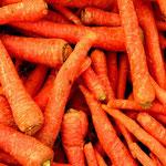 carottes...