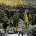 les premières couleurs de la vallée de Hunza