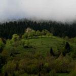Dégradé de verts dans les montagnes de Kaçkar