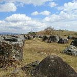 Ebene der Ton- oder besser Steinkrüge in Phonsavan
