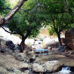 Lauschige Plaetzchen im Wald bei Mashhad