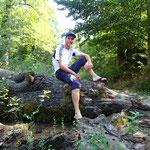 Golestan Nationalpark, viele Wildschweine & gruene Waelder!