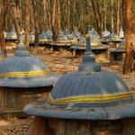 Der wohl einzige Friedhof für Elefanten der Welt steht in Ban Tha Klang