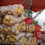 Auch türkische Bauern ernten grosse Kartoffeln!