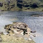 Laguna De Rey de Huancabamba(Piura).