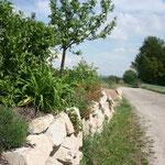 Wurfsteinmauer, naturnahe Grundstücksgrenze