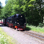 Harzquerbahn bei Netzkater
