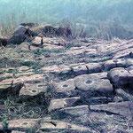 le coppelle intagliate nella roccia